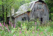 barns / I love all old Barns..... / by Stacey Fox Kingston
