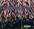 Veterans Day Materials