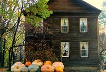 festive | autumn / by lauralei