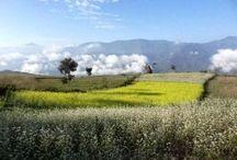 Trek au Népal / Treks etc... / Quelques clichés de mon trek au Népal. Copyright Ambrefield Photo  D'autres photos de treks à venir..