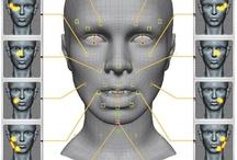 face regions