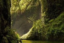 Places to visit - Oregon / by Sharon Rogers-Anderson