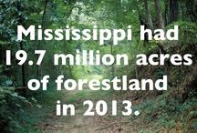 Mississippi Facts