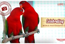 Must Clicks at Ramoji Film City / It's World Photography Day! Why not celebrate it with showcasing the best things to be photographed at Ramoji Film City!
