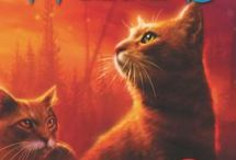 New Junior Fiction/Non-Fiction / Our latest additions for Jr. Fiction and Non-Fiction.  Clicking on the pin will take you right to our catalog with the ability to place a hold on the item.