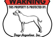 Dogo Argentino Signs and Pictures / Warning and Caution Dogo Argentino Dog Signs. https://www.signswithanattitude.com/dogo-argentino-signs.html