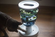 Cat Feeding Toy Review