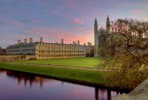 i wanna study here