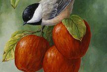 Ptaki - birds.