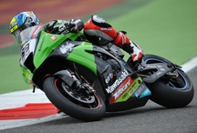 Kawasaki Racing Team - Monza / by Ma-Fra S.p.A.