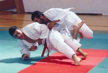 Judo / La Dojo Arashi di San Cesario viene fondata nel 1970 dal Maestro Lettere Romano Antonio ed è tuttora una delle migliori palestre della Puglia. Nel corso degli anni ha conseguito numerosi successi, grazie anche all'ottima preparazione e alla serietà dei suoi atleti.