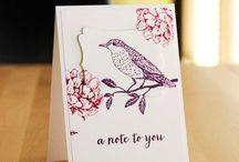 Cards - Birds