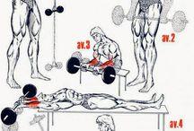Forearm workout