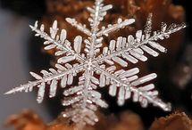 Snowflakes / by Margaret Fedak