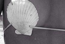 Bikini shell / Biquinis