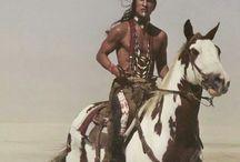 Cavalos indigenas