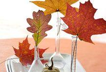 Autumn + Fall Things