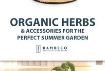 Organic Herbs & Accessories for the Perfect Summer Garden / Our certified organic herbs can be grown year-round indoors on your kitchen windowsill or any sunny place. Freshen up your garden and your meals this summer with fresh basil, mint, parsley, cilantro and more. We also offer all the garden accessories and tools you need to master your planter.
