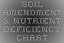 Nutrition deficiencies