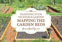Gardening / Helpful gardening tips and articles