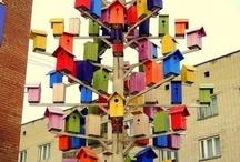 Bird Houses / by Karie Dixon