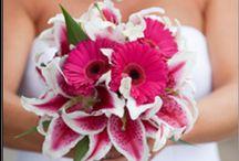 Lynn flowers