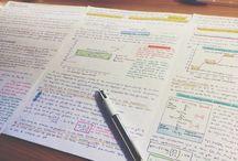 StudiAmo