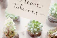 Wedding Favors / by Alyssa Mercier