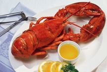 Lobster Facts / Little known facts we thought you should know about the Lobster.