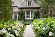 Dröm trädgård
