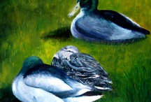 Paintings For Sale / by Barbara Taylor-Harris Artist