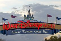 Walt Disney World Resort / by Nati