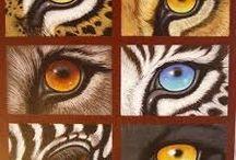eyes wildtiere