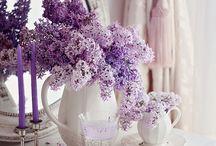 purple things everything