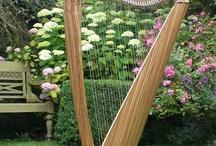 Music ~ violin & harp