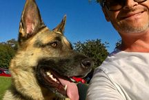 Steven Cox Instagram Photos At the park with my buddy. #dogs #germanshepherd #happyplace