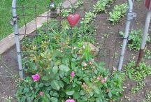 Garden L❤VE