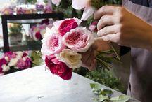 Sizin için!  / Bizler escicek.com ailesi olarak en yeni ve en farklı çiçek tasarımlarını sizler için hazırlıyoruz! www.escicek.com çok yakında kurumsal&bireysel çiçek tasarımlarıyla sizlerle  #esçiçek #kurumsal #bireysel #online #çiçektasarımı #çiçek #tasarım #yakında #eticaret #cuma #günaydın