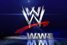 The World of WWE Wrestling Entertainment / I am a die-hard wrestling fan period.