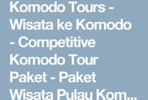 http://www.komodoecotour.com/tours-sehari-ke-komodo