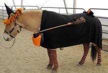 Halloween-hest