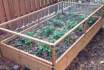 vedgie garden ideas