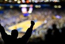 Sport Marketing Articles / by Megan Jenkins