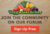 VeggieGardener
