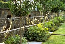 Garden design / by Debbie Ison