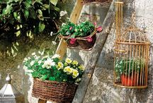 Backyard Decor and Gardening