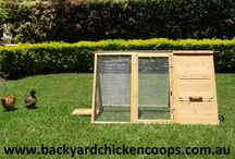 The Cluck Med by Backyard Chicken Coops / If you would like a couple of eggs a day from a few hens and don't want to invest a lot of money, this is the coop for you! Your hens will be safe from predators (snakes) with the small gage wire. A third of the coop is enclosed by timber to keep the girls warm and dry, which also houses a nesting area for laying eggs. The inside also features a removal base and a 50mm perch to ensure stability superior comfort for your hens' feet www.backyardchickencoops.com.au / by Backyard Chicken Coops