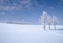 日本の四季(冬)[Japan's four seasons(Winter)]