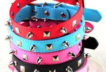collars, leashes etc