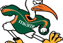 Miami Hurricanes + Tailgating / by Crystal Kelley